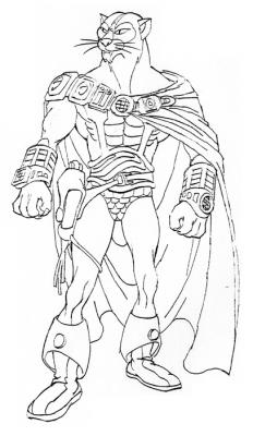 The design for the unused character of Cat Man.